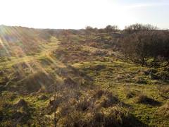 Heemskerkerduin (RunningRalph) Tags: nature dunes nederland natuur duinen noordholland heemskerk noordhollandsduinreservaat heemskerkerduin