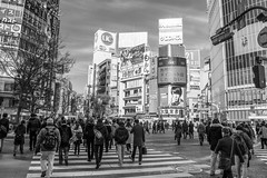 Shibuya Crossing (SMSidat) Tags: city trip travel vacation people blackandwhite holiday travelling tourism japan tokyo crossing shibuya citylife tourist wanderlust traveller yolo
