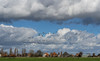 20160211-1340-10 (donoppedijk) Tags: nederland nl noordholland zuiderwoude