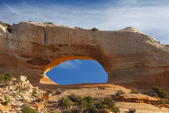 Wilson Arch along Highway 191 (Dave Toussaint (www.photographersnature.com)) Tags: travel november usa nature photoshop canon landscape utah photo interestingness google interesting ut raw day photographer image scenic picture clarity hwy clear explore cc adobe getty moab southeast highway191 adjust 2015 wilsonarch entradasandstone denoise 60d topazlabs spanishvalley photographersnaturecom davetoussaint creativecloud naturalsandstonearch