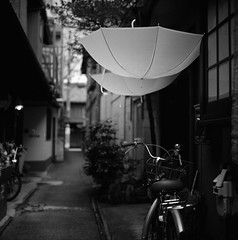 After the Rain, in the Alley (Purple Field) Tags: street bw 120 6x6 tlr film monochrome bicycle japan analog rolleiflex zeiss umbrella walking square iso100 alley kyoto fuji carl   medium neopan   f28 planar acros 80mm    28c         canoscan8800f japaninbw   stphotographia  m
