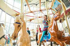 WRHS-6012 (FarFlungTravels) Tags: ohio horse history beach museum kids fun play ride cleveland carousel activity euclid merrygoround universitycircle euclidbeach