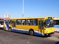 Mercedes Benz O307 TST 374, Terminal do Barreiro, 5 de Maro de 2005 (Paulo Mestre) Tags: bus portugal mercedes autobus tst barreiro autocar autocarro 374 o307 8384fq