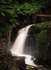 amphitheatre falls (jonathan sander) Tags: longexposure canon landscape waterfall rainforest australia melbourne victoria gippsland noojee jonathansanderphotography