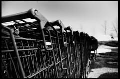 ( Digital Denial ) Tags: blackandwhite film analog 35mm diy kodak highcontrast expired tp shoppingcarts techpan converginglines repeatingpatterns