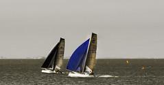 Go for it. (Late Developer) Tags: sea race racing catamaran regatta dinghy watersport seayacht