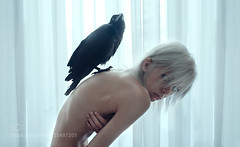 Lmos (tycampbe) Tags: light shadow portrait woman white black bird animal dark hair nude sadness fly pain wings alone hand skin body room side curtain fear crow thin conceptual pure scar pureness corax 500px ifttt