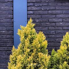 Waterdonken_Artstudio23_014 (Dutch Design Photography) Tags: new architecture fotografie natuur workshop breda blauwe miksang wijk zien huizen luchten uur hollandse fotogroep waterdonken