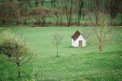 Little House (freyavev) Tags: trees house green nature field contrast germany landscape deutschland outdoor littlehouse badenwürttemberg badurach vsco