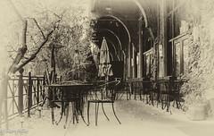 Sidewalk Cafe (HarryMiller002) Tags: blackwhite cafe montana downtown missoula