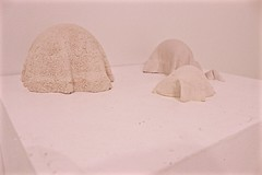 IMG_8115 (Capybailey) Tags: sculpture white art texture 3d towel plaster fabric installation forms textiles casts