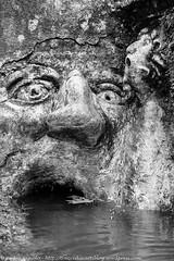 16 (traccediscatti) Tags: tivoli fiume villa roccia acqua pietra bocca deste volto