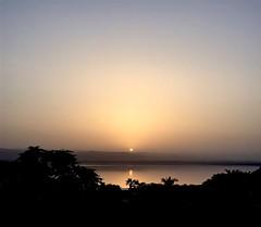 111 / 366 (lufegu) Tags: ocean sunset sea tree water landscape dead outdoors tranquility majestic idyllic scenics tranquilscene orangecolor beautyinnature dadsea horizonoverwater madabajordan deadseajordan
