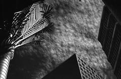 (eddieddieddie) Tags: newzealand sky urban bw clouds 80s agfa caffenolc 135format 35mmfilmscanningwellington