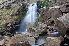 Santa Fe del Montseny (Gatodidi) Tags: santa parque naturaleza agua nikon arboles natural catalunya fe riachuelo seda catalua rocas montaas cascada piedra manantial helada montseny humedales d90 deshielo
