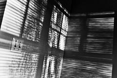 On the Wall (llewelynjarvis) Tags: shadow sunlight art beautiful wall contrast fun virginia sundown room style panasonic explore shade lumixg dmcgf5