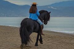 Malaga (Pieter Mooij) Tags: beach andalusia malaga blackhorse amazone