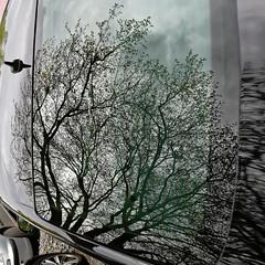 Lichtspiele 2016-008_Web (berni.radke) Tags: reflection essen illusion mirage reflexion spiegelung spiegelbild zollverein spiegelungen lichtspiele trugbild