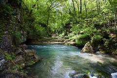 Greer Spring (Bob Patton) Tags: nature missouri rivers streams creeks missouriparks