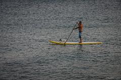 Marineros (SantiMB.Photos) Tags: summer espaa dog man beach geotagged atardecer dusk lanzarote playa canarias perro verano esp hombre paddlesurf puertodelcarmen 2tumblr sal18250 2blogger vacaciones2014 geo:lat=2891970616 geo:lon=1365548551