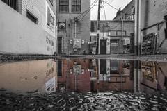 5. Portal (Hannah_Moody) Tags: water puddle splash hdr reflction