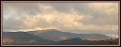 The Bald Mountain at Wolf Laurel (bankst) Tags: nature nikon cloudy tennessee northcarolina elevation appalachiantrail alpinezone applachianmountains southernappalachians baldmountains d5100 treesfailtogrow