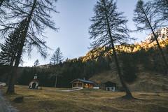 Cabin life (tomaszhsk) Tags: travel mountain mountains alps clouds forest landscape outdoors austria tirol sunny wideangle hike tokina adventure explore planetearth aov artofvisuals