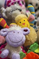 366 2016 006 - Maisie's world (Ningaloo.) Tags: world family home toys soft 006 maisie 2016 366