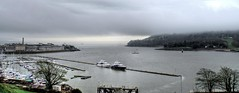 Grey Day (Paul.Y-D) Tags: sea sky mist plymouth sound yachts breakwater harbours rtamar
