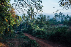 Morning walk in Kozhikode (Premshree Pillai) Tags: india kerala calicut kozhikode indiajan16