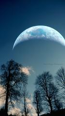 Planet Earth (yusuf_alioglu) Tags: world trees sky tree clouds forest photography photo photographer earth space dream panasonic planet spacetravel outerspace universe cosmos uzay spaceage gkyz planetearth orman dnya gezegen erbaa yusufaliolu yusufalioglu unbornart interplanerty