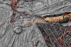 Frozen (cees van gastel) Tags: ice frozen bevroren edited ijs bewerkt tamron70300mm pannenhoef ceesvangastel canoneos550d