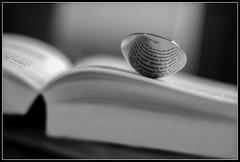 Une bonne dose de lecture 3 fois par jour (objet introuvable) Tags: blackandwhite bw canon reading book dof noiretblanc photos bokeh nb livre