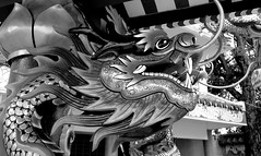 Chinese Dragon... (larryoien) Tags: thailand lumix dragon panasonic chinesedragon kalasin digitalcompact lx5 travellight totallythailand