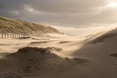 Dunes in the wind (paxalgra) Tags: shadow storm beach clouds wind poles katwijk