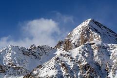 chaberton (MILESI FEDERICO) Tags: wild italy nature nikon europa europe italia nat natura piemonte dettagli tamron alpi piedmont valsusa milesi alpicozie valledisusa d7100 visitpiedmont altavallesusa altavaldisusa valliolimpiche nikond7100 milesifederico