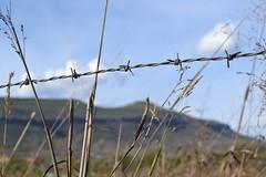 Postales de Mi Pueblo: Cerro de Santiago (Xellif) Tags: naturaleza nature mxico landscape jalisco paisaje postal colotln