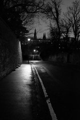An old way in to town (Lucky Poet) Tags: trees winter monochrome night dark lights evening scotland blackwhite edinburgh dusk streetlamp spires 365 deanvillage