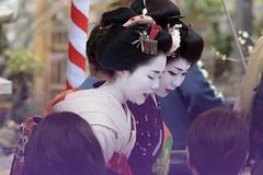 北野天満宮・梅花祭13・Kitano Shrine (anglo10) Tags: festival japan kyoto shrine 神社 北野天満宮 梅 祭り 京都市 京都府 梅花祭