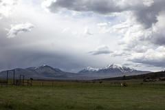 La Sal Mountains (Jeff Mitton) Tags: horses mountains fence landscape utah pasture thunderhead lasalmountains wondersofnature westernlandscape earthnaturelife