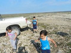 Going swimming at Long Point August 2015 05 (cambridgebayweather) Tags: swimming nunavut cambridgebay arcticocean