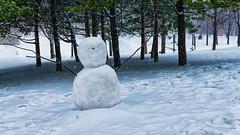 Je te voire, tu me souris, mais je t'entend pas. (MichelGurin) Tags: ca winter  canada tree nature lumix snowman exterior montral hiver arbres qubec extrieur qc parclafontaine bonhommedeneige 2016 activitdhiver michelgurin nikcollection photoshopcc tousdroitsrservsallrightsreserved lumixdmcfz1000 lightoomcc toutereproductionentoutouenpartiesousquelqueformequecesoitestinterditesanslautorisationpralabledelauteur toutereproductionentoutouenpartiesousquelqueformequec