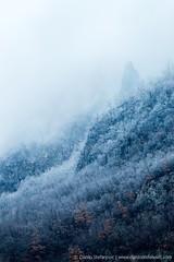 Tresnjica River Canyon (TalesOfAldebaran) Tags: blue mountain cold ice vertical canon river landscape serbia canyon led m42 gorge upright 32 135mm srbija kanjon planina plavo jupiter37a hladno  fotografije pejzaz fineartprints klanac 700d klisura tresnjica 37a talesofaldebaran danilostefanovic wwwdanilostefanoviccom gornjatresnjica drlace drlae gornjekolje gornjekoslje