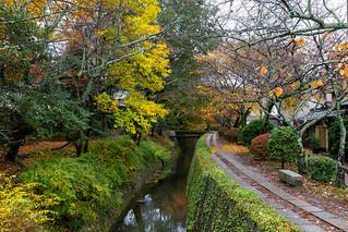 秋の哲学の道 / Tetsugaku no Michi Street
