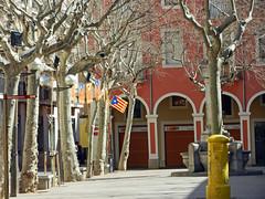 Calm (Antropoturista) Tags: trees red square arbol spain flag catalunya pltanos luminria plazuela platanen vilafrancadepenedes
