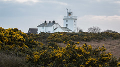 Cromer lighthouse (Dave_Cossey) Tags: lighthouse evening spring cromer