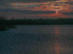 Pinks and Blues (Ian M Bentley) Tags: uk pink blue sunset lake clouds grey peaceful pinkshadow pinkclouds settingsun stillwaters 1250mm stanwick stanwicklakes pinkshimmer northamptonshireengland marchevening olympusem5