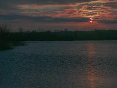 Pinks and Blues (Ian M Bentley) Tags: uk pink blue sunset lake clouds grey peaceful pinkshadow pinkclouds settingsun stillwaters 1250mm stanwick stanwicklakes pinkshimmer northamptonshireengland marchevening olympusem5
