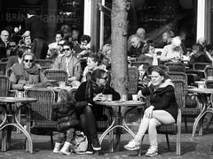A Sunny Day in Haarlem (streamer020nl) Tags: people holland haarlem netherlands nederland explore paysbas terras noordholland niederlande 2016 explored 160316