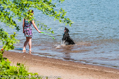 _DSC5223.jpg (orig_lowolf) Tags: people usa dog oregon nikon flickr lakeoswego georgerogerspark d300s chasingwater willimateriver